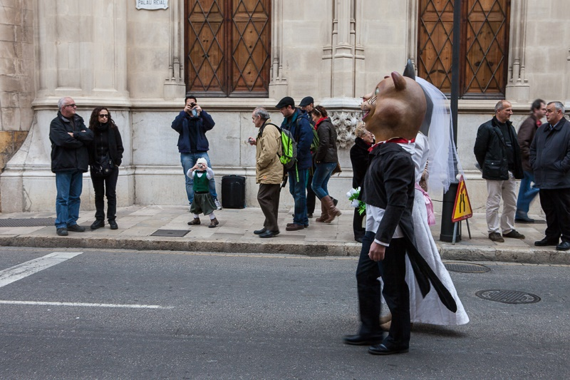 The animal consecration to San Antoni is a spectacle for young and old