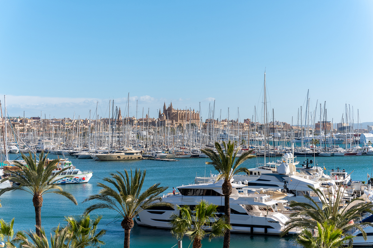 Palma City with a view of the marina and the cathedral.