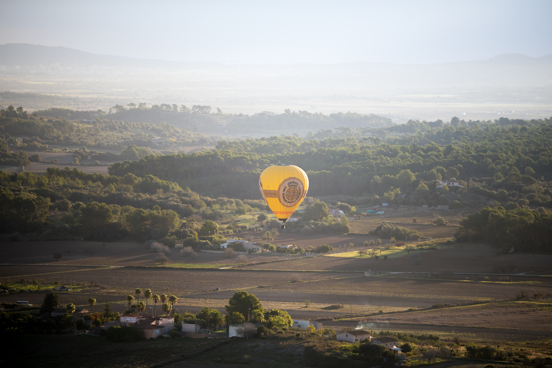 Mallorca will remain a popular hotspot for international investors in 2019.