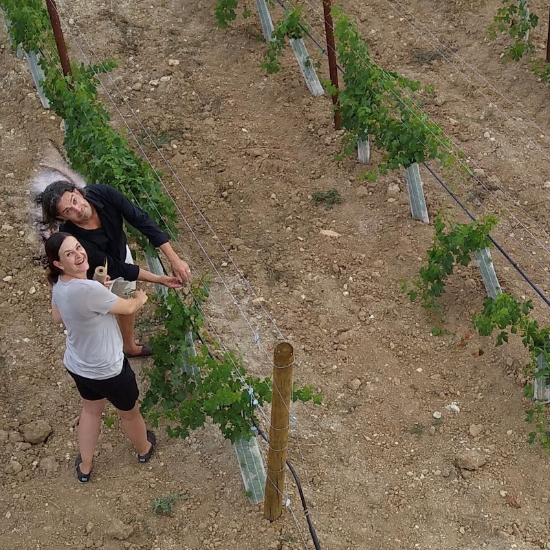 The couple Grahe finances their dream of being a winegrower in Mallorca with innovative ideas. Image: Alexandra and Sören Grahe