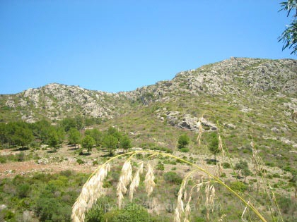 View of the mounains