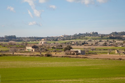 The views of Sineu