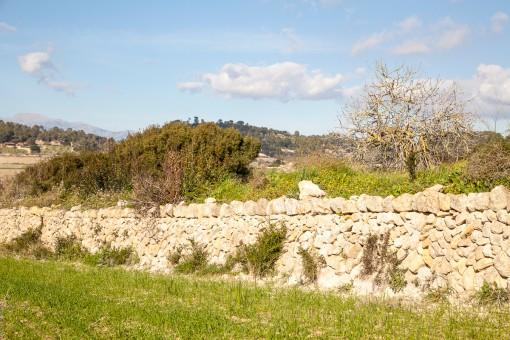 The beautiful dry stone wall