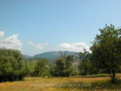 Plots near to Palma