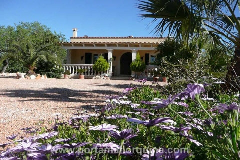 finca in Llucmajor for sale