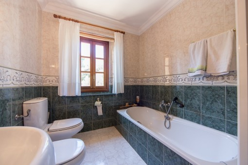Bathroom with bathtub and daylight