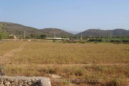 Plot with mountain view