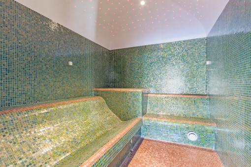 The spa area offers also a steam room