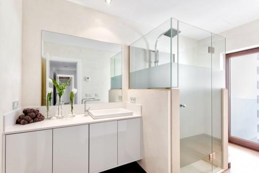 Noble, bright guest bathroom