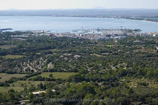 Views over Port Alcudia
