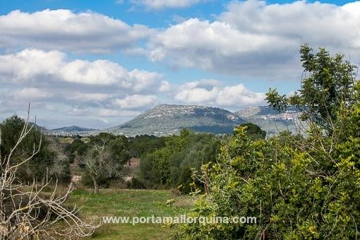 Views towards Llucmajor
