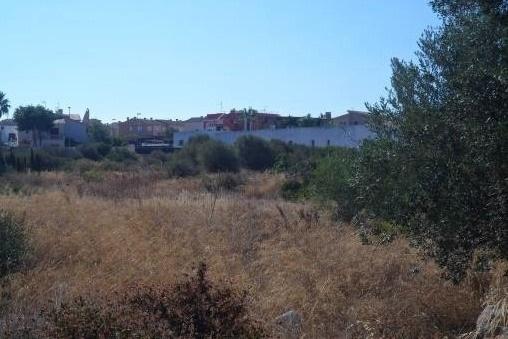plot in Sa Torre