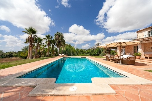 Charming and tiled poolarea with palms