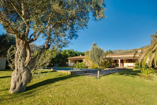finca in Pollensa for sale