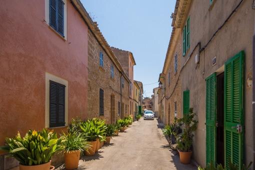 Street in Alcudia