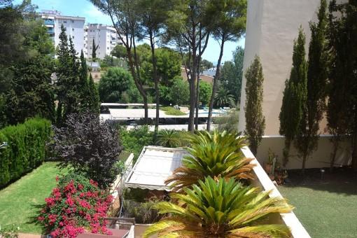 apartment in Cas Catala