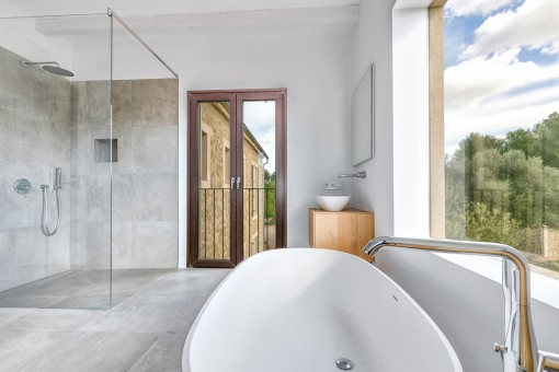 Comfortable bathtub and walk-in shower