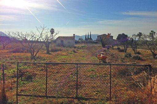 plot in Alcudia