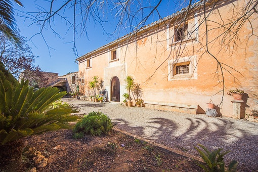 finca in Consell