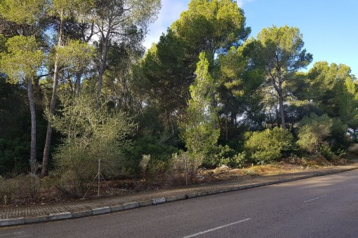 Large corner-building plot for a luxury villa near to Santa Ponsa golf course