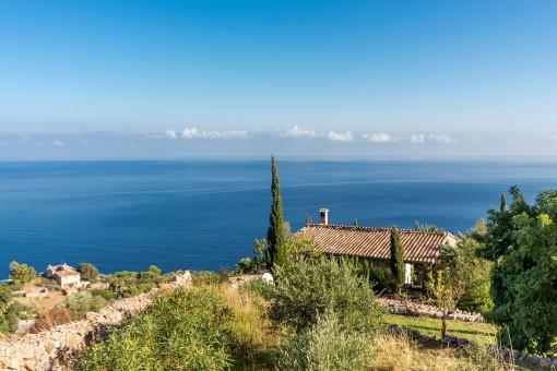Dreamlike sea views from the property