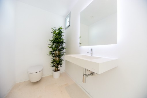 Separate guest toilet