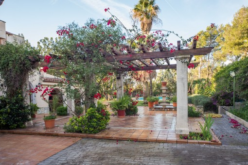Romantic garden with pergola