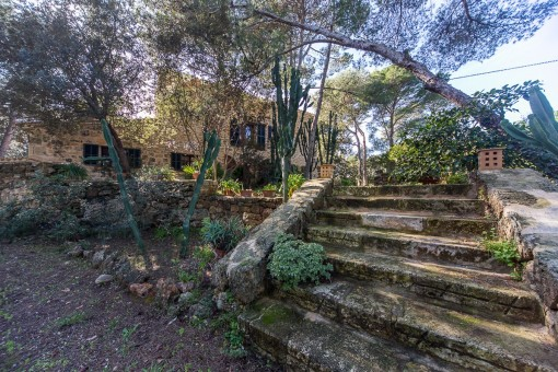Stone staircase leads to the finca