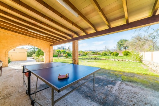 Table tenis area with garden views