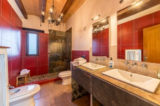 Bathroom with daylight and shower