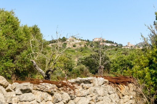 plot in Arta for sale