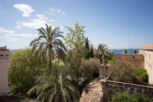 Mediterran sea views from the roof terrace