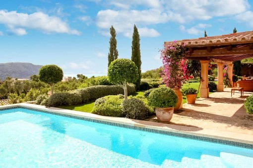 Views from the pool to the garden