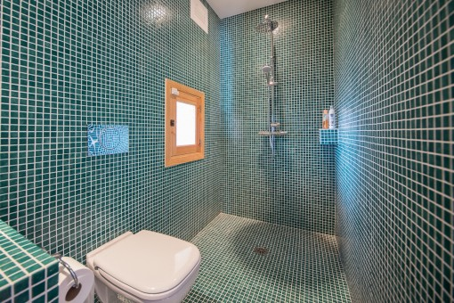 Blue tiled bathroom with shower and daylight