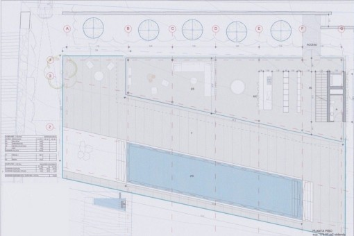 Plan with pool