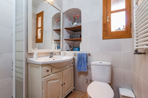 Bathroom with shower and daylight