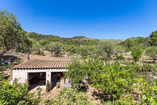 Spacious plot with horse paddock and stables