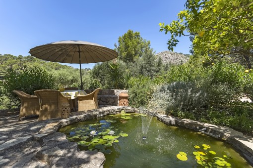 Tranquil terrace with garden pond