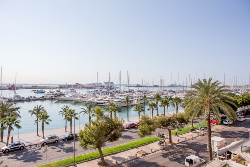 Wonderful views over the promenade and the harbour of Palma