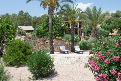 The finca is an oasis of calmness