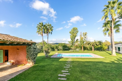 Beautiful garden with pool