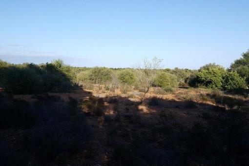Quiet location