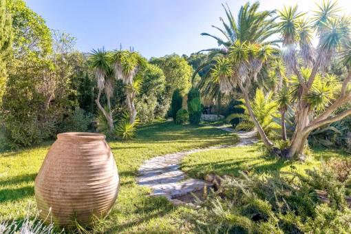 The garden of the finca