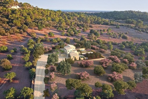 The finca is situated in idyllic and mediterranean surroundings