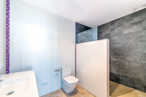 Great walk-in shower in the first bathroom