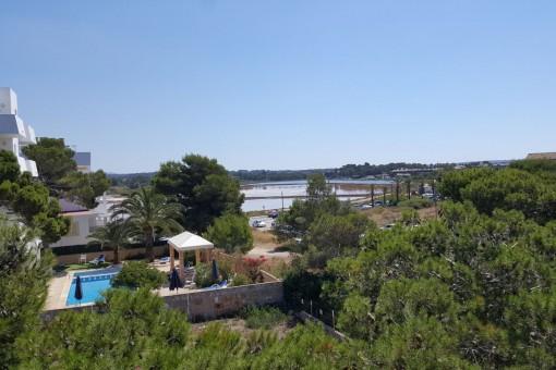 Views of the neighbourhood