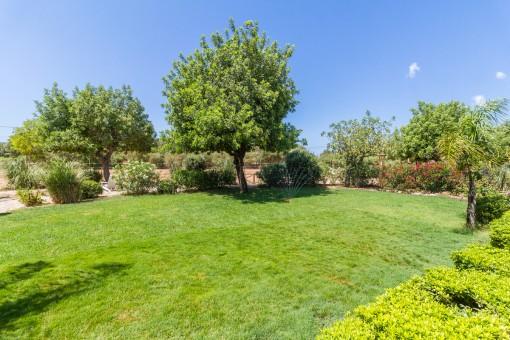 Large, mediterranean garden