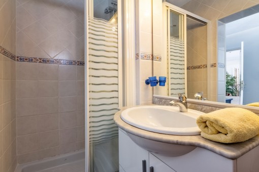 Bathroom with shower of the guest apartment