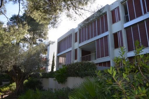 apartment in Calvia