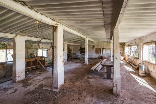 Indoor view of the paddock